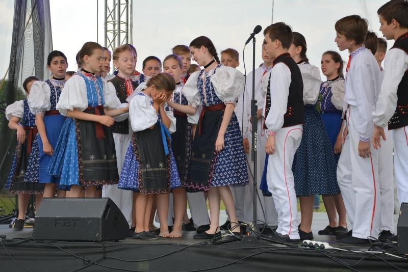 1-likavka (198)