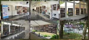 Výstava DFS